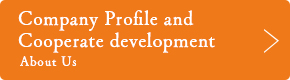Company Profile and Cooperate development About Us